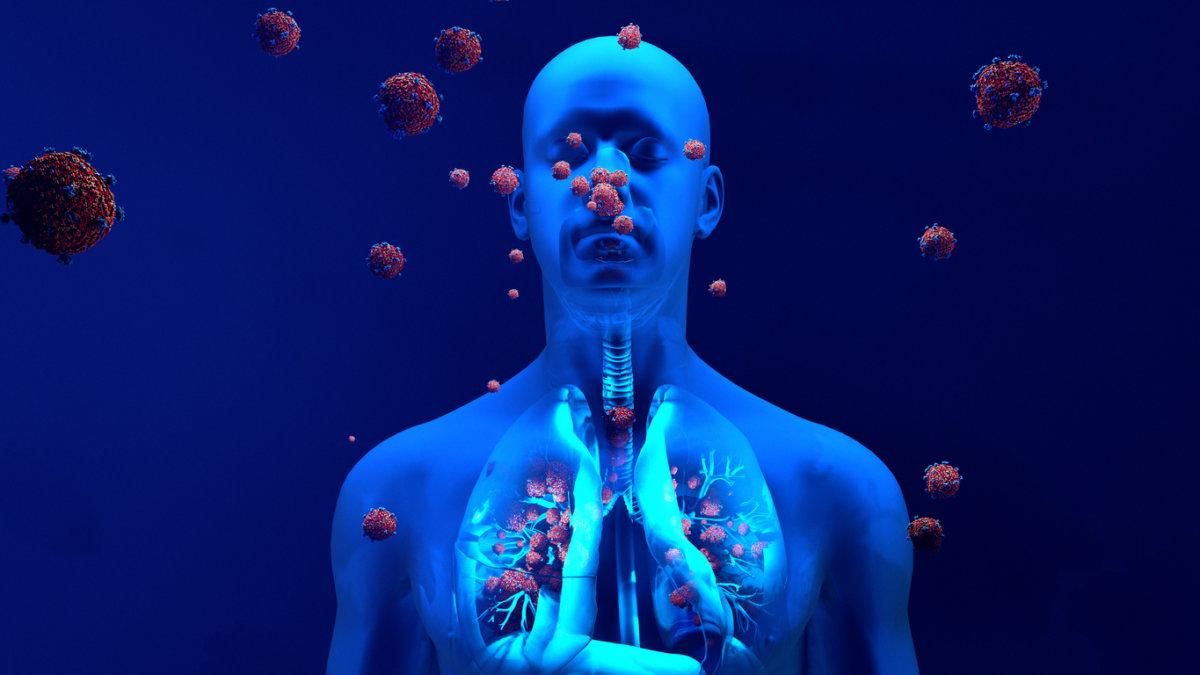 Vitamina D e sistema imunológico: veja mitos e verdades